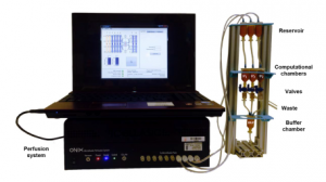 Image of the open-flow computation device for one combination of inputs. Credit: Macia et al.