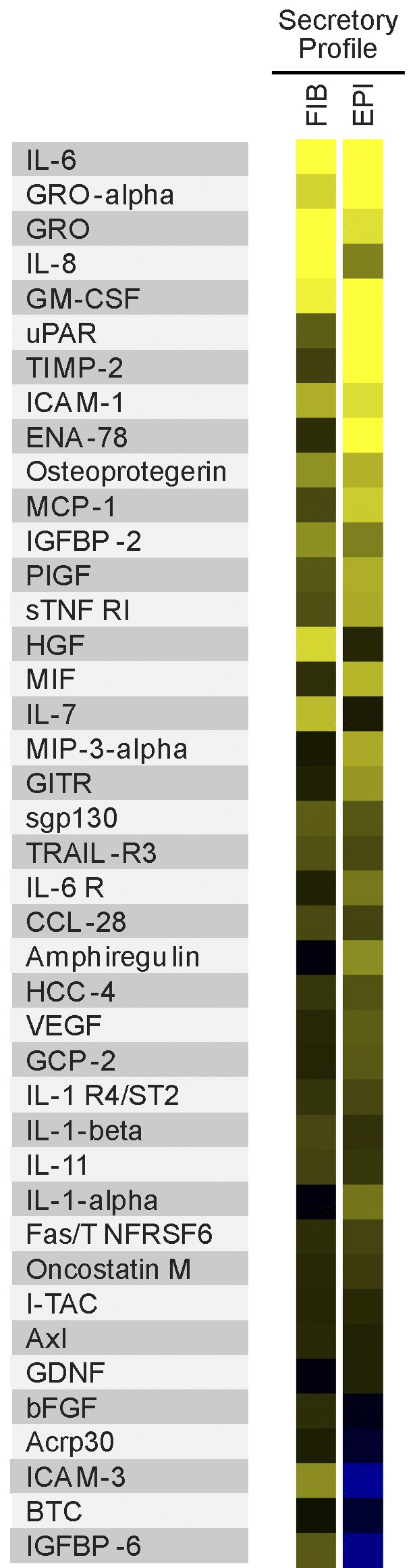 Yellow indicates abundant proteins in the SASP of two cell types (Coppé et al., PLOS Biology)