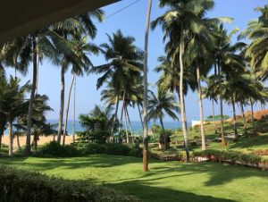 A view from the conference venue. Image credit: Michael Lichten (National Cancer Institute)