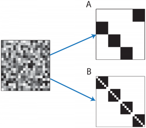 Illustration of connectivity matrices: Left—random connectivity, A. Synfire chain connectivity, B. Self connected assemblies. In all panels horizontal (vertical) axes represent the pre (post) synaptic neuron. Image Credit: Ravid Tannenbaum, Burak.